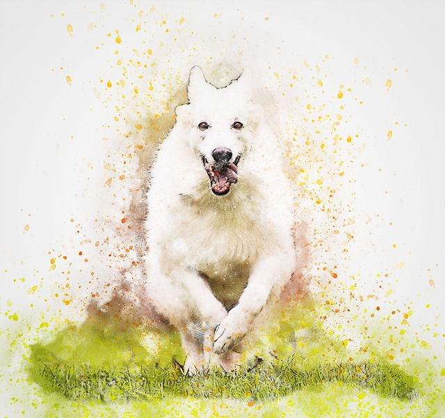 Pup Portraits messages sticker-10