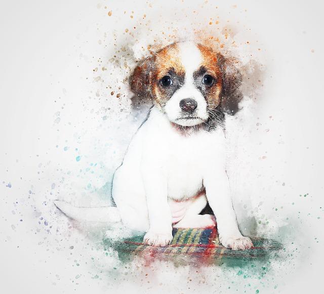 Pup Portraits messages sticker-11