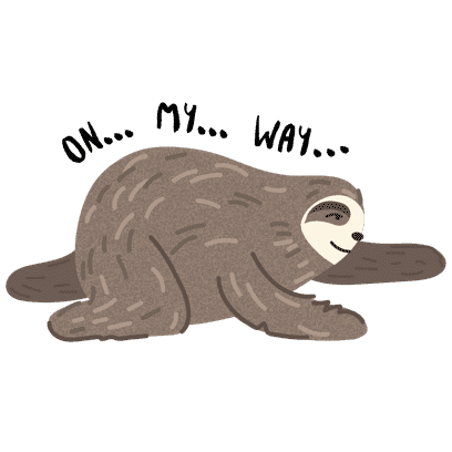 It's a Sloth Life Stickers messages sticker-3