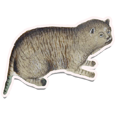 Medieval Cats messages sticker-2