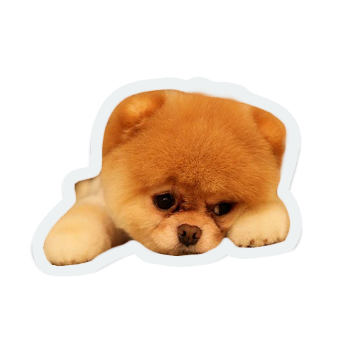cute animals: sad and lonely messages sticker-6