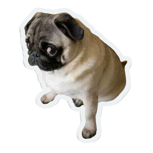 cute animals: sad and lonely messages sticker-1