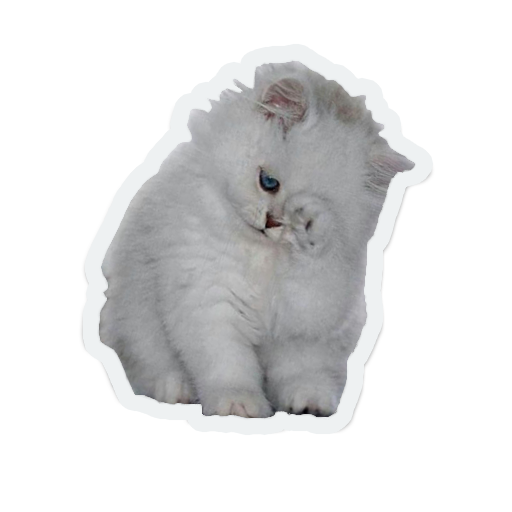 cute animals: sad and lonely messages sticker-9