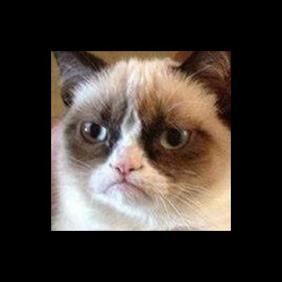 Facecats messages sticker-4
