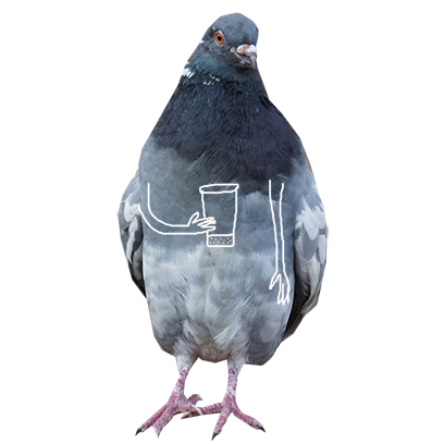 Pigeon With Hands messages sticker-4