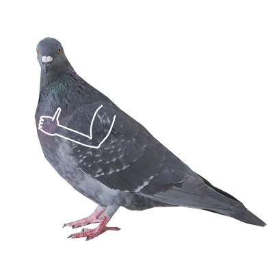 Pigeon With Hands messages sticker-2
