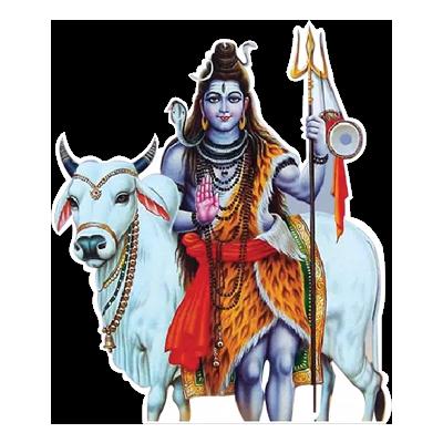 Mahashivratri Stickers messages sticker-5