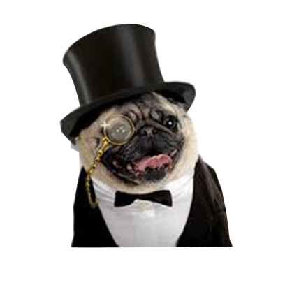 animals wearing monocles messages sticker-1