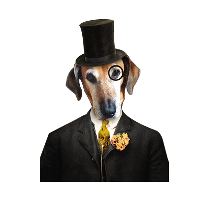 animals wearing monocles messages sticker-2