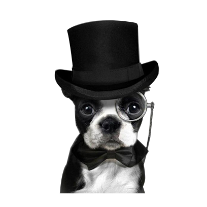 animals wearing monocles messages sticker-0