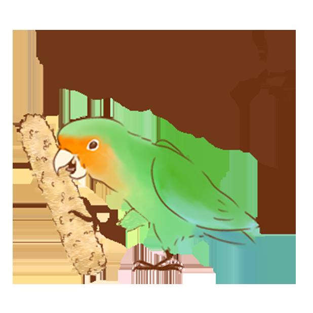 小可愛搞怪鳥家族 messages sticker-8