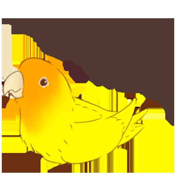 小可愛搞怪鳥家族 messages sticker-5