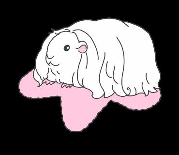 fluffy-white-friends messages sticker-9
