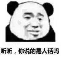 Panda Stickers messages sticker-11