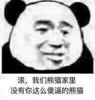 Panda Stickers messages sticker-10
