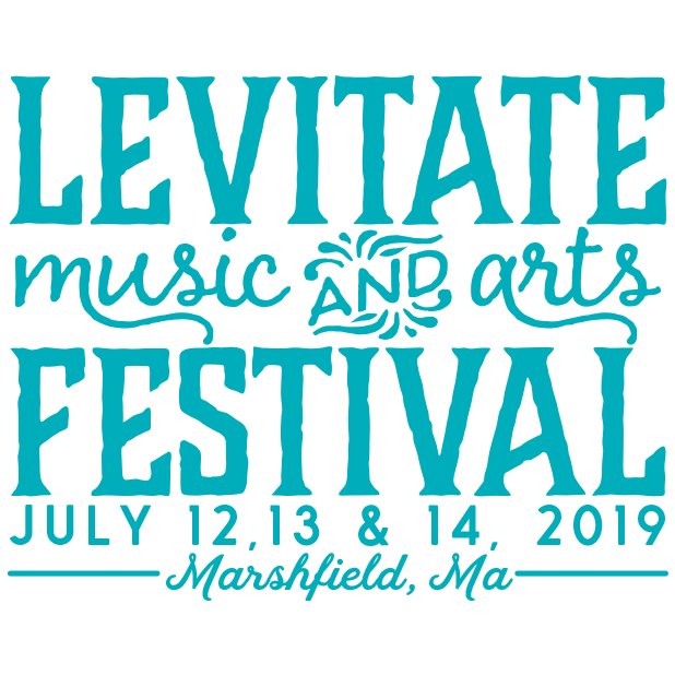 Levitate Music & Arts Festival messages sticker-9