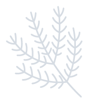 WinterOwlAndTreeStc messages sticker-8