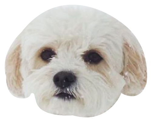Precious Puppies messages sticker-0