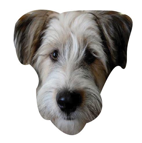 Precious Puppies messages sticker-6