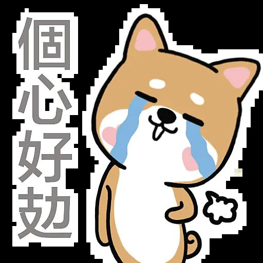 Q.P Dog - Sticker messages sticker-5