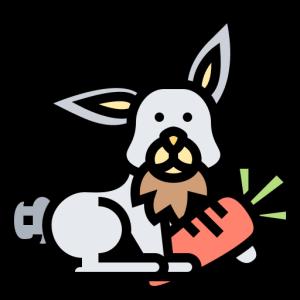 PetShopPi messages sticker-1