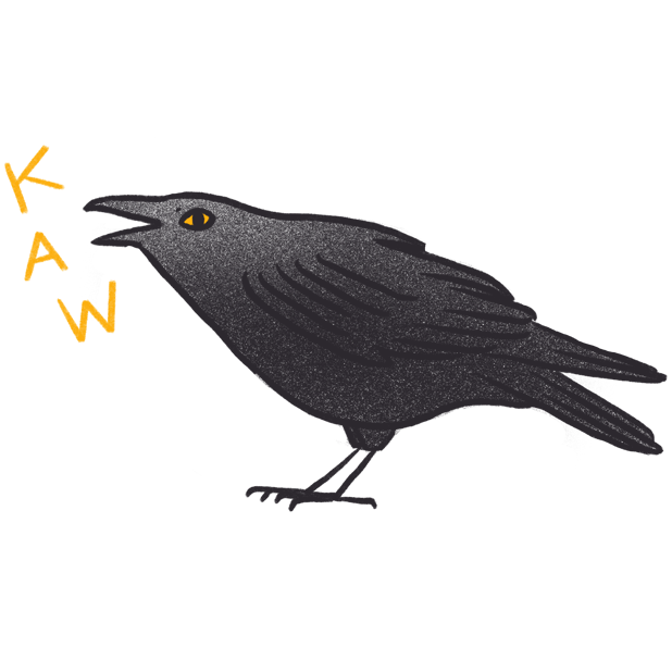 Crow Bro messages sticker-0