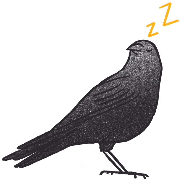 Crow Bro messages sticker-9
