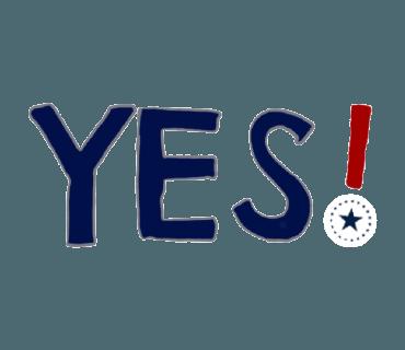 Mississippi Flag messages sticker-2