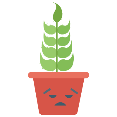 Cute Cactuss messages sticker-6