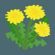 Fidano Kecuto messages sticker-4