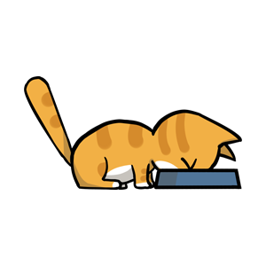 黄猫 messages sticker-0