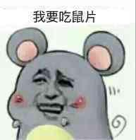 爱鼠表情助手 messages sticker-7