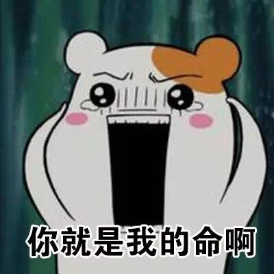 爱鼠表情助手 messages sticker-11