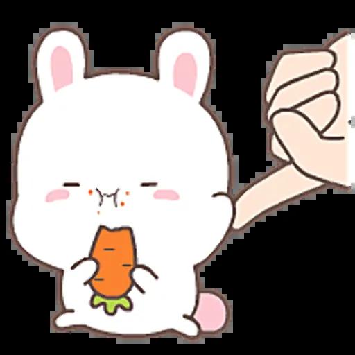 HappyRabbit-Sticker messages sticker-6