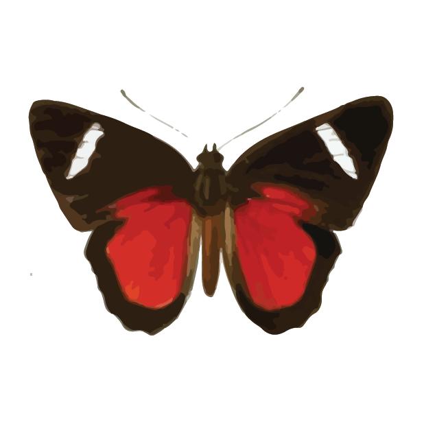 Butterflies Volume 1 messages sticker-6
