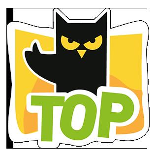 Mèo Đen messages sticker-3