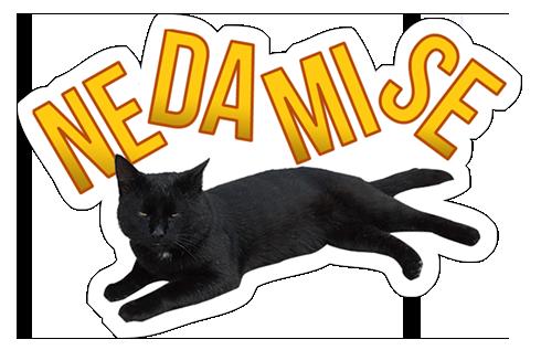 Mèo Đen messages sticker-0