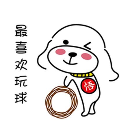 暖心宠儿泰迪 messages sticker-9