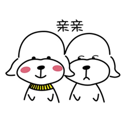 暖心宠儿泰迪 messages sticker-2