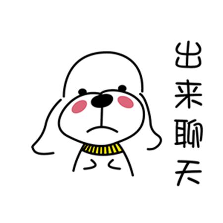 暖心宠儿泰迪 messages sticker-0