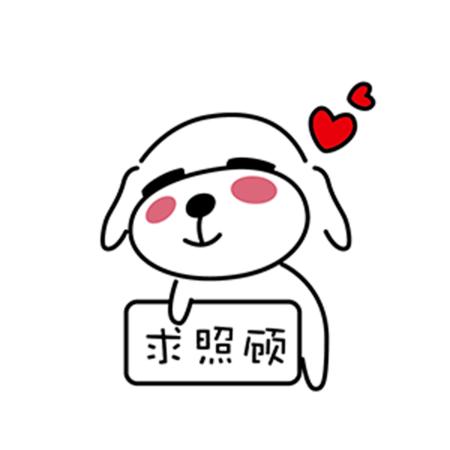 暖心宠儿泰迪 messages sticker-7