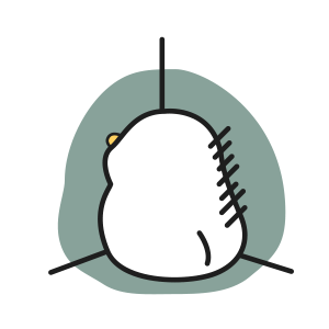 可爱动漫鸭 messages sticker-5