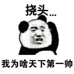 怼怼大玥子 messages sticker-9