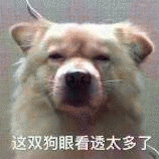Cute Dog Emoji messages sticker-0