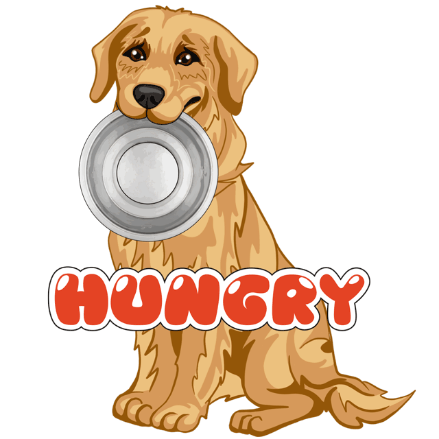 RadarMojis - Golden Retriever messages sticker-4