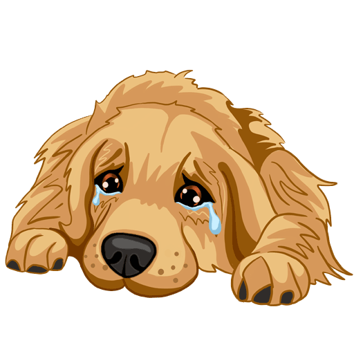 RadarMojis - Golden Retriever messages sticker-8