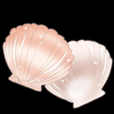 Cute Seashell Sticker messages sticker-7