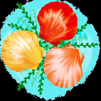 Cute Seashell Sticker messages sticker-3