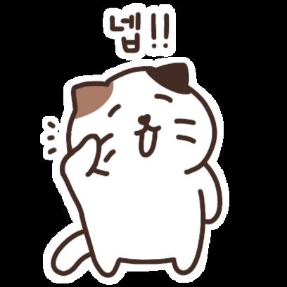 우리집 햄냥이 쨈쀼 messages sticker-11