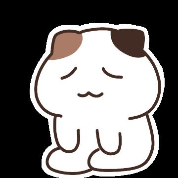 우리집 햄냥이 쨈쀼 messages sticker-4